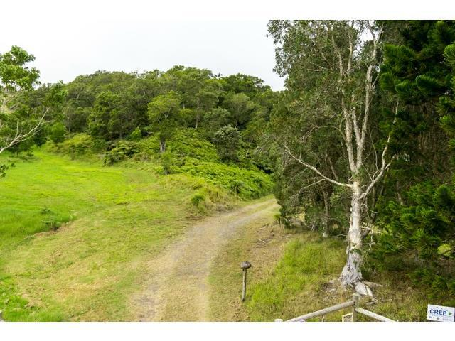 Photo of 44-5346 Waikaalulu Rd #Lot 85A, Honokaa, HI 96727